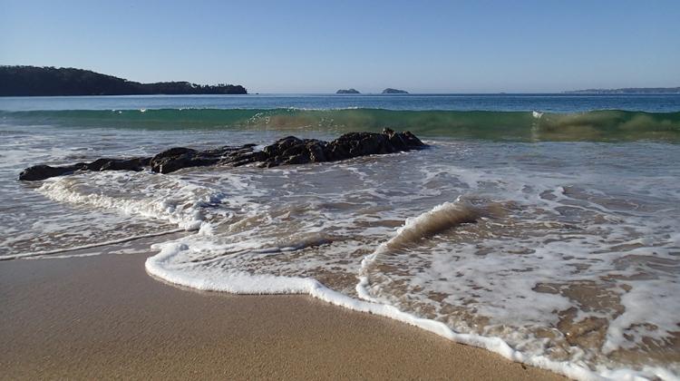 "Ian Coghlan ""Maloneys Beach"""