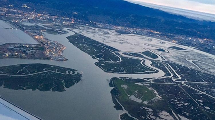 "William Glamore ""Restored wetlands in San Francisco bay"""
