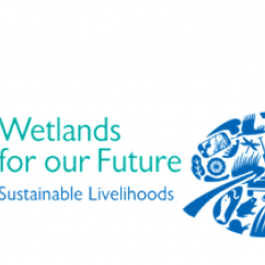 2016 International World Wetlands Day