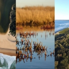 2021-Intermittent-estuaries-in-a-changing-climate
